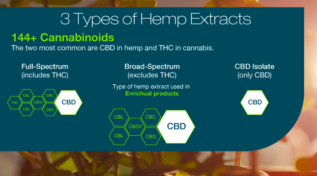 3 Types Of Hemp Extracts_Enrichual